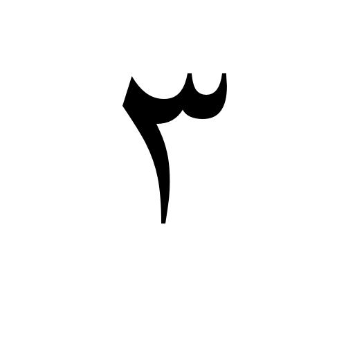 ٣ glyphs times new roman regular